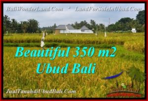 Magnificent PROPERTY LAND IN UBUD BALI FOR SALE TJUB540