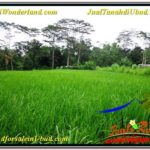Affordable PROPERTY LAND SALE IN UBUD TJUB563
