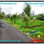 Magnificent PROPERTY 2,900 m2 LAND IN Ubud Tampak Siring FOR SALE TJUB564