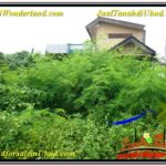 Affordable 2,200 m2 LAND SALE IN UBUD BALI TJUB565