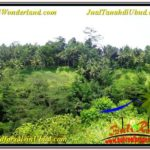 Exotic 15,490 m2 LAND IN UBUD BALI FOR SALE TJUB568