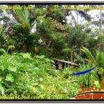 Beautiful LAND FOR SALE IN UBUD TJUB572