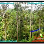 Magnificent 2,000 m2 LAND FOR SALE IN Ubud Payangan TJUB573
