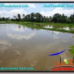 Exotic LAND FOR SALE IN UBUD TJUB561