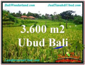 FOR SALE Beautiful 3,600 m2 LAND IN UBUD BALI TJUB566