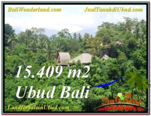 FOR SALE Exotic LAND IN Sentral Ubud BALI TJUB568