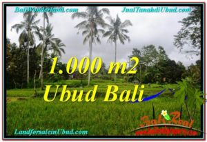 Affordable PROPERTY LAND IN UBUD FOR SALE TJUB570