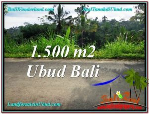 Beautiful PROPERTY LAND IN UBUD BALI FOR SALE TJUB556
