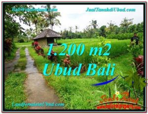 FOR SALE Exotic 1,200 m2 LAND IN UBUD BALI TJUB559
