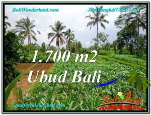 Magnificent 1,700 m2 LAND FOR SALE IN Ubud Payangan TJUB560