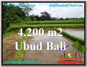 FOR SALE Exotic 4,200 m2 LAND IN UBUD BALI TJUB561