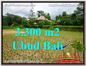 Magnificent UBUD BALI 3,300 m2 LAND FOR SALE TJUB562