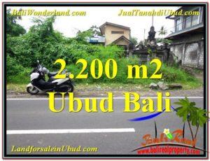 Beautiful PROPERTY 2,200 m2 LAND IN Sentral Ubud BALI FOR SALE TJUB565