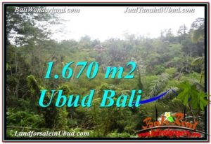 Magnificent PROPERTY 1,670 m2 LAND FOR SALE IN Ubud Payangan BALI TJUB569