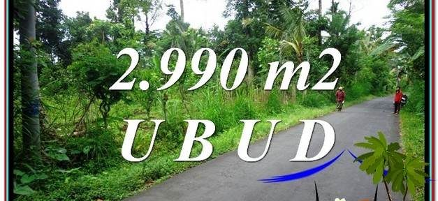 Exotic PROPERTY 2,990 m2 LAND IN Ubud Tegalalang FOR SALE TJUB591