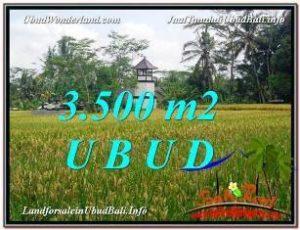 Beautiful PROPERTY LAND IN UBUD FOR SALE TJUB596