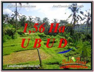 Magnificent UBUD BALI 15,600 m2 LAND FOR SALE TJUB601