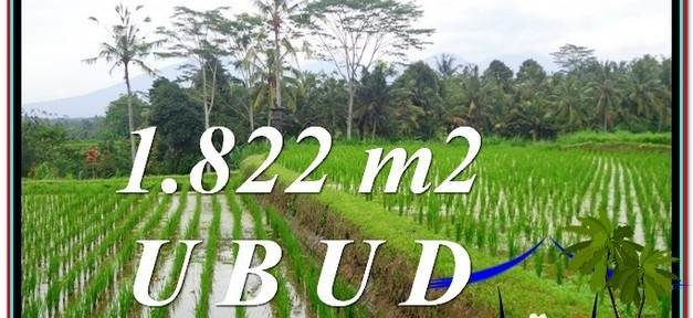 FOR SALE Affordable PROPERTY LAND IN Ubud Payangan BALI TJUB574