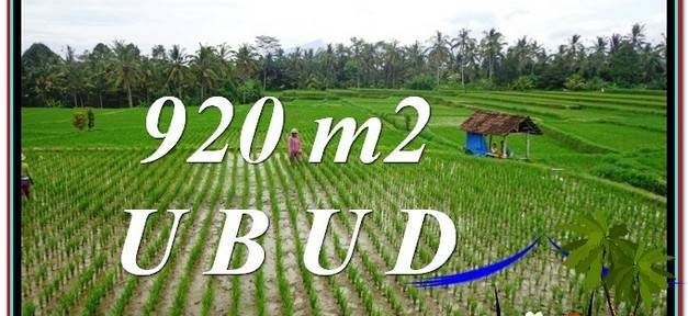 Magnificent PROPERTY LAND SALE IN UBUD TJUB575