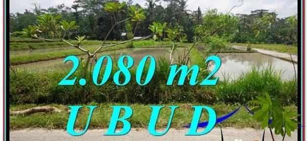 FOR SALE Beautiful LAND IN Ubud Pejeng BALI TJUB582