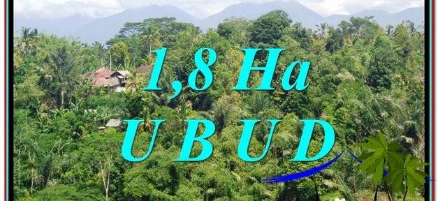 Affordable PROPERTY 18,000 m2 LAND FOR SALE IN Ubud Tegalalang TJUB589
