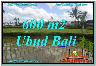 Magnificent UBUD BALI 600 m2 LAND FOR SALE TJUB621