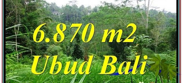 FOR SALE Affordable LAND IN Ubud Tampak Siring TJUB602