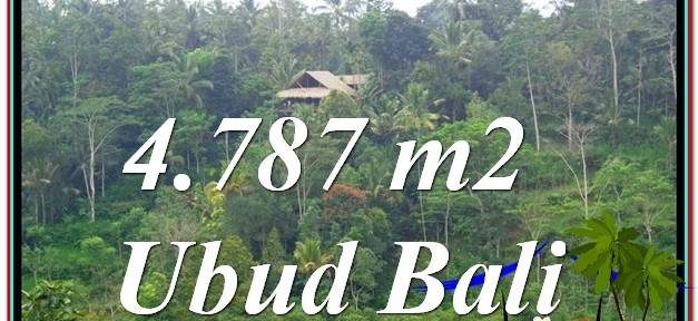 Beautiful 4,787 m2 LAND SALE IN UBUD BALI TJUB603