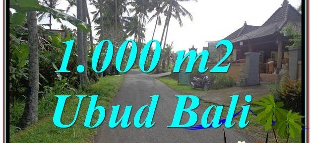 Exotic LAND FOR SALE IN Ubud Pejeng BALI TJUB604