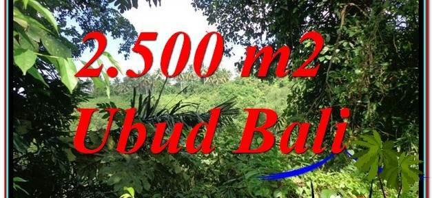 FOR SALE Affordable PROPERTY 2,500 m2 LAND IN UBUD BALI TJUB605