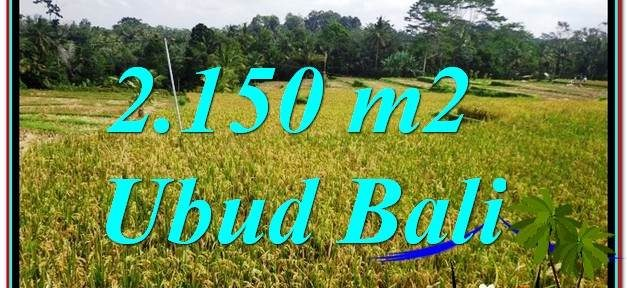 FOR SALE Exotic PROPERTY 2,150 m2 LAND IN UBUD TJUB606