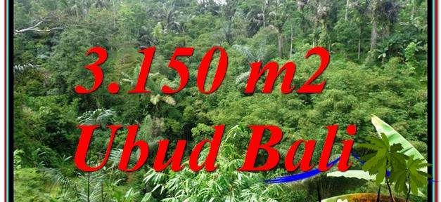 Beautiful Ubud Tegalalang BALI LAND FOR SALE TJUB608