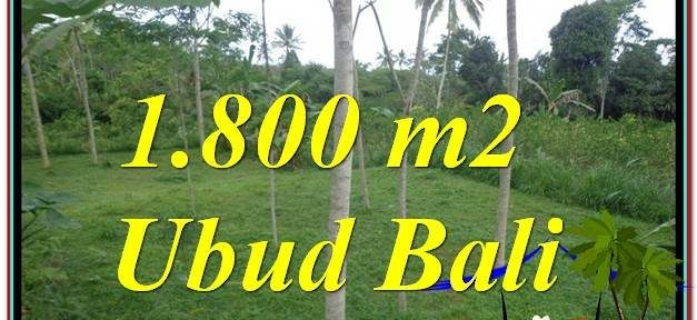 FOR SALE Exotic PROPERTY LAND IN Ubud Tegalalang BALI TJUB610