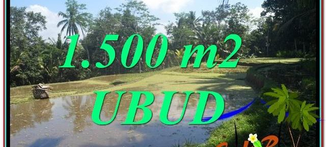 UBUD 1,500 m2 LAND FOR SALE TJUB630