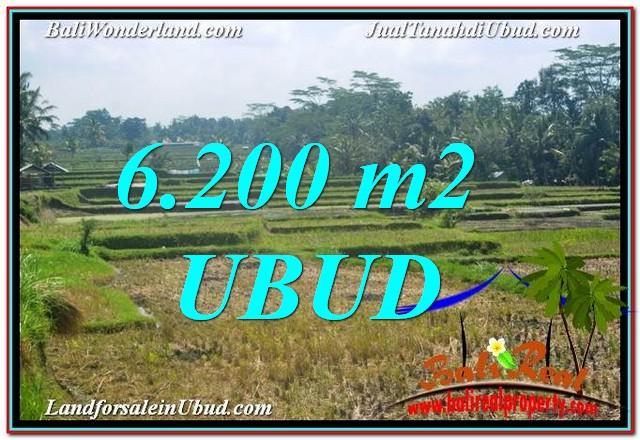 Beautiful UBUD 6,200 m2 LAND FOR SALE TJUB631