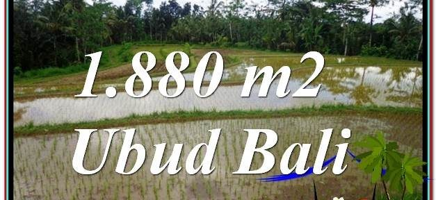 Ubud Tegalalang BALI LAND FOR SALE TJUB613