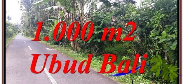 FOR SALE Exotic 1,000 m2 LAND IN UBUD TJUB614