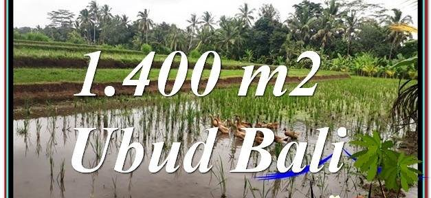 Affordable LAND SALE IN Ubud Payangan BALI TJUB615