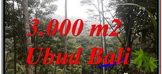 FOR SALE Exotic LAND IN Ubud Payangan BALI TJUB617