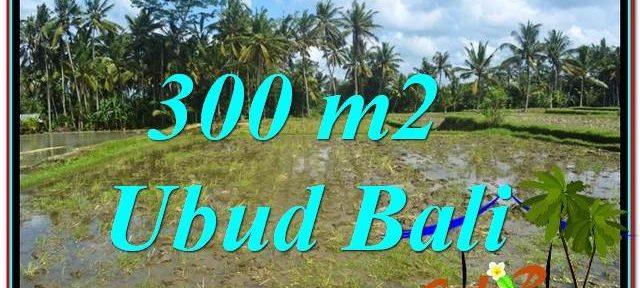 Beautiful LAND FOR SALE IN UBUD TJUB619