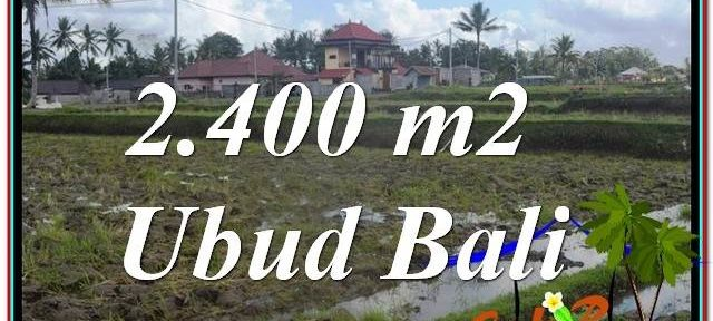 Magnificent Ubud Pejeng BALI LAND FOR SALE TJUB620