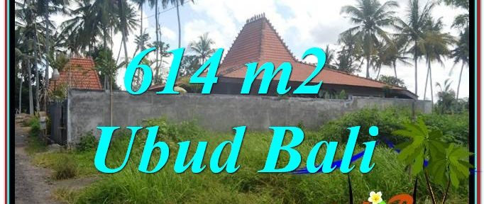 Exotic PROPERTY 614 m2 LAND SALE IN UBUD BALI TJUB622