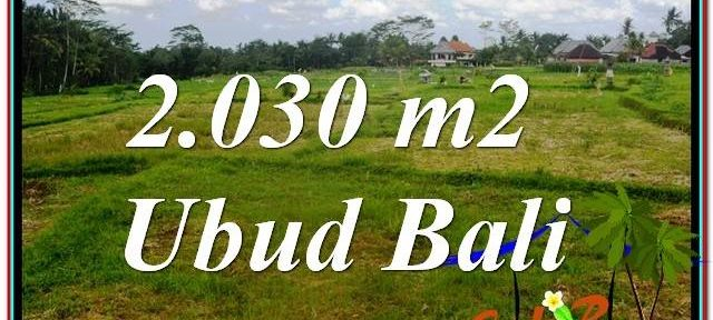 Exotic PROPERTY UBUD LAND FOR SALE TJUB623