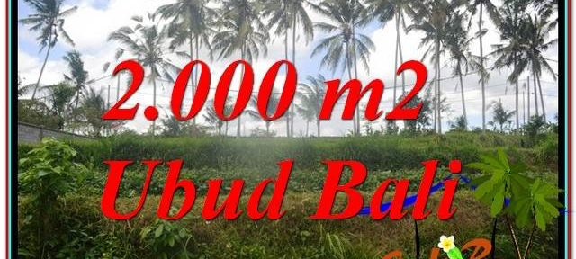 Magnificent PROPERTY LAND SALE IN UBUD TJUB625