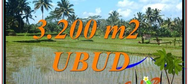 LAND FOR SALE IN Ubud Payangan BALI TJUB628