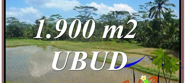 1,900 m2 LAND FOR SALE IN UBUD BALI TJUB629