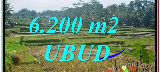 Magnificent PROPERTY LAND FOR SALE IN UBUD BALI TJUB631