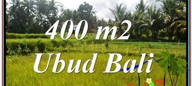 Beautiful PROPERTY LAND IN UBUD BALI FOR SALE TJUB627