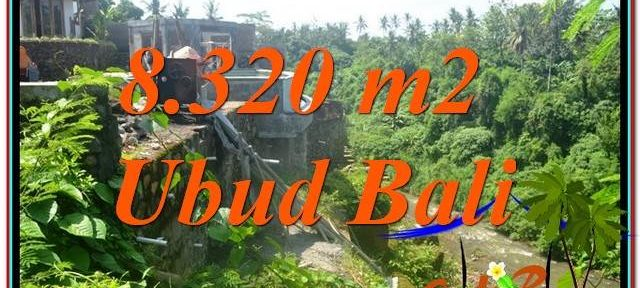 Magnificent 8,320 m2 LAND SALE IN UBUD BALI TJUB635