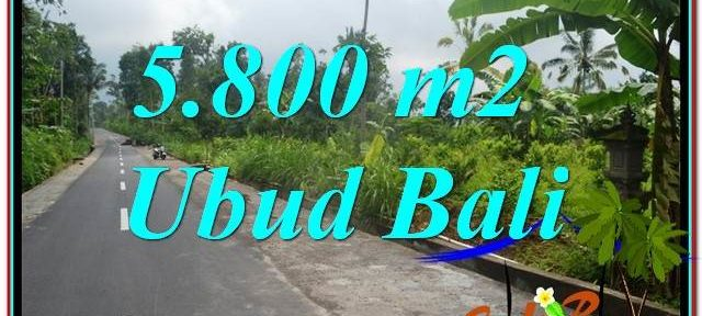 FOR SALE Beautiful 5,800 m2 LAND IN UBUD BALI TJUB637